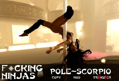 Pole-Scorpio Pose Ad